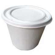 buy bagasse container online india