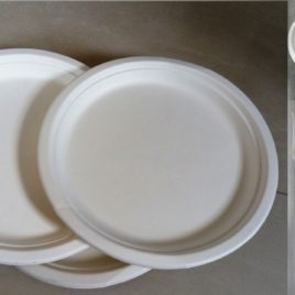 Ecofriendly Party Pack – 9 inch plate -100pax