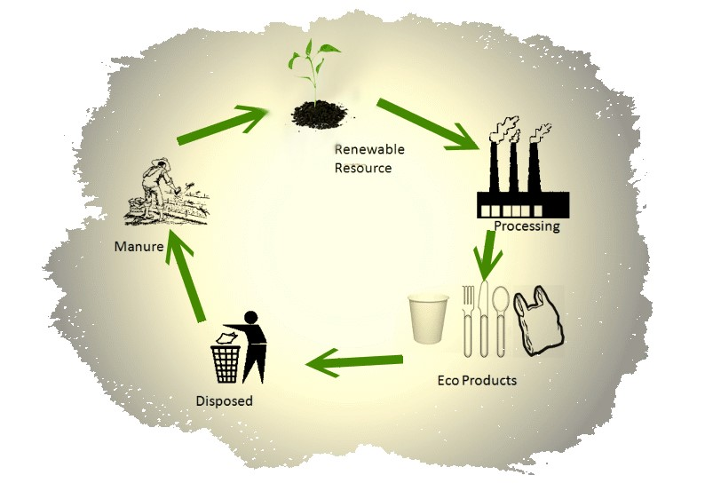 Eco-friendly products business startup idea